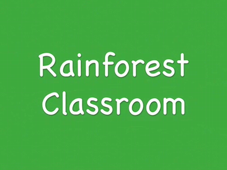 Rainforest Classroom part 3