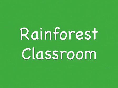Rainforest Classroom part 3