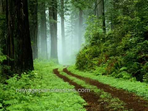 Relaxing Music for Piano - Forest Rain