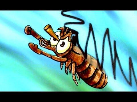 Tortures for Flies: Superhero