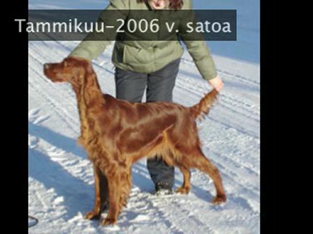 Karhutarhan 2007 katsaus ja Onnea vuoteen 2008