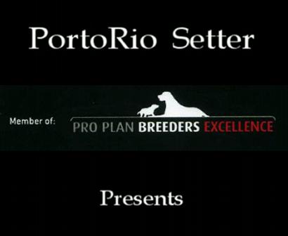 PortoRio IS Rolling Stones litter 28 11 2009  part 1