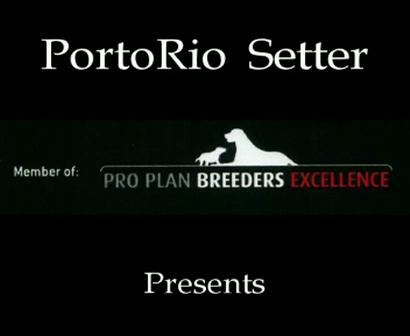 PortoRio IS Rolling Stones litter 28 11 2009 part 2 audio (20 DAYS)