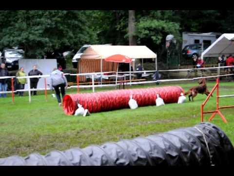17/07/11 - Guebwiller - Jumping - Cécilia et D'Ginger