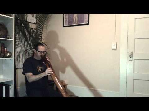 New Manzanita didgeridoo demo D# drone F trumpet