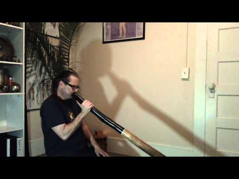 New Buckeye didgeridoo drone C# to D 1st trumpet in E