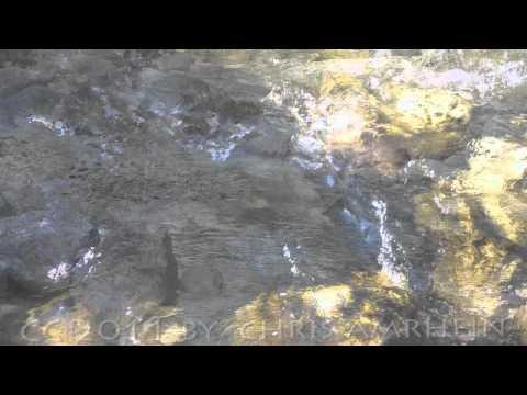 """Chris Amrhein DVD Meditation """" IM FLUSS DES LEBENS SEIN"""""""