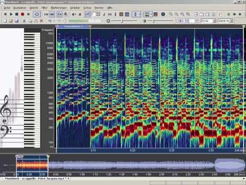 Wie sieht Musik aus? How Does Music Look Like?