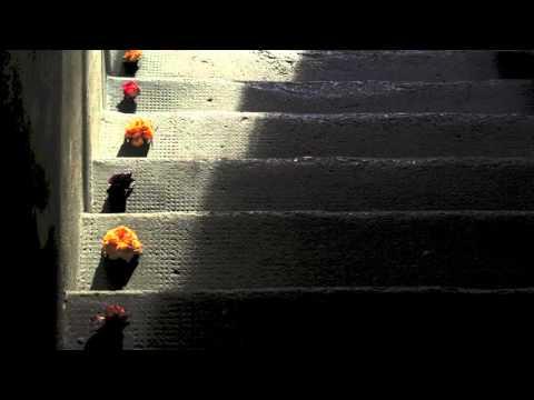 SAD TUNE - Fujara duet