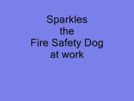 Sparkles the Fire Safety Dog at Work