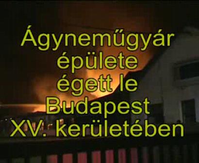 warehouse burned in Budapest
