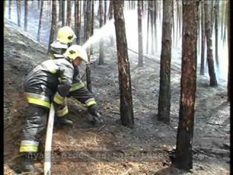 Fire Department Budapest 2007