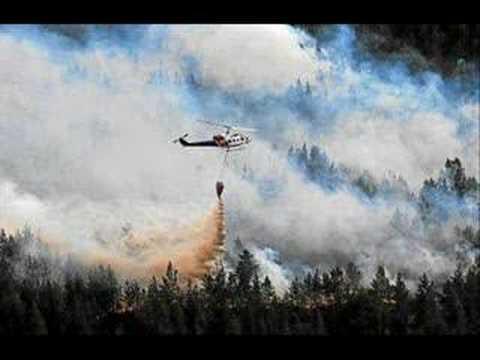 Norwegian Wood-Aust Agder Wildfire