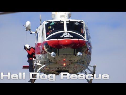 Heli Dog Rescue