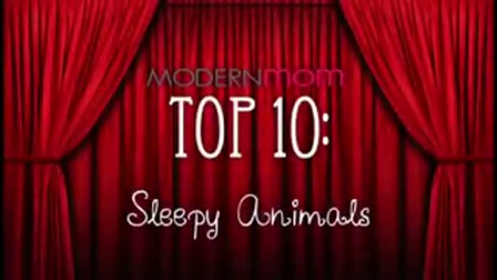 Sleepy Animals-3