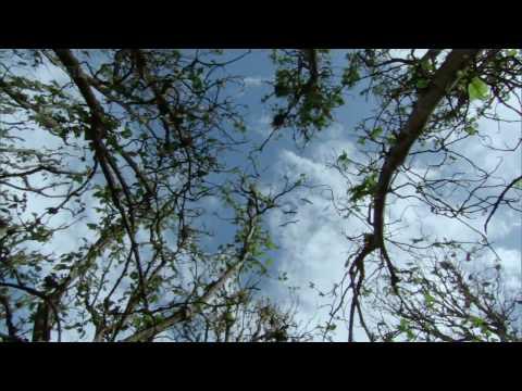 BBC South Pacific S01E02 Castaways 720p 03