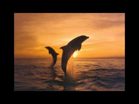 Crosby Stills & Nash - Southern Cross (Remastered/lyrics)