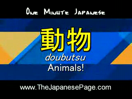 Learn Japanese_ 1 Minute Japanese - Animals!
