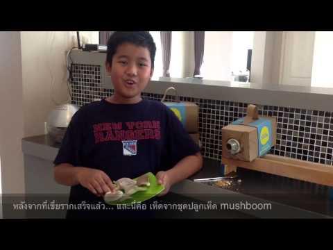 Mushboom Mushroom Growing Kit 2
