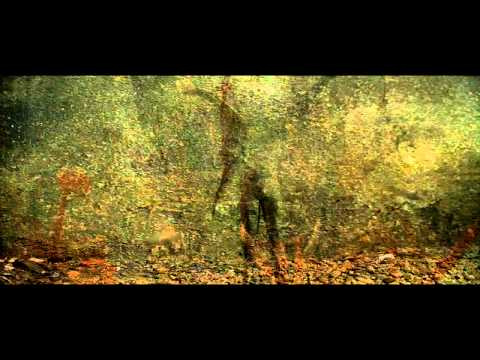 AR WILDWOLF - LUNA