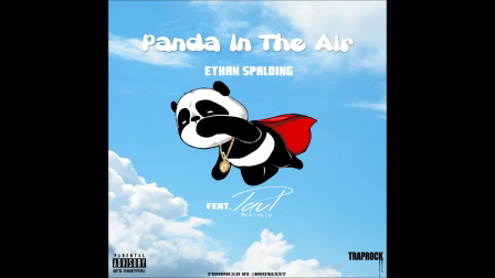 ETHAN SPALDING PANDA IN THE AIR