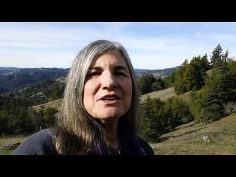 JoAnn SkyWatcher's 2011 Tapfest Message