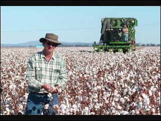 Ted Anderson - From Cotton To Interest Bearing Money