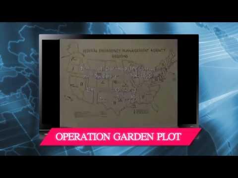 PROFUNC, REX84, Coast Guard Martial Law - Sunday Update