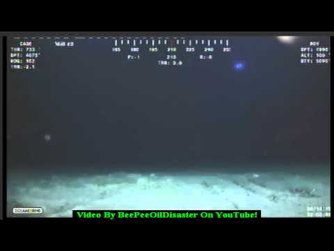 *ALERT* Humanoid Shape In The Gulf Of Mexico! *ALERT*