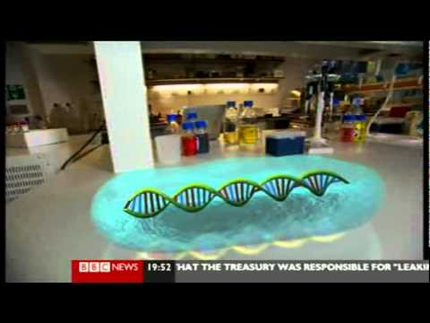 Synthetic Biology- DNA Splicing, Creating New Organisms and Vaccines