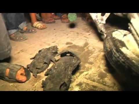 Israeli airstrike wounds eight in Gaza