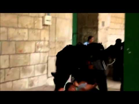 Israeli Police Brutality Against Palestinians [VIEWER DISCRETION ADVISED]