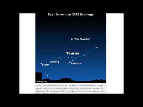 Meteors beginning late night November 10, moon and Venus before dawn November 11
