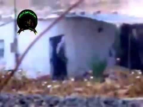 جنود الاحتلال يعدمون فلسطينية جنوب قطاع غزة