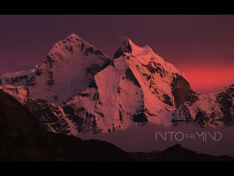 Into The Mind - Official Teaser
