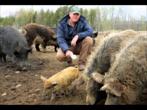 Farmer Threatened with Ruby Ridge Like Raid pt 1