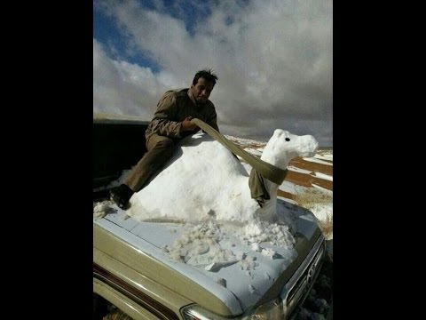 Mini Ice Age 2015-2035 |  Blizzard Drops Feet of Snow Across Middle East (41)