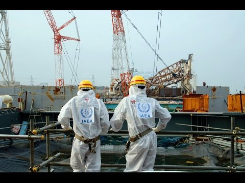 Fukushima's 4 Year Anniversary - The Asia-Pacific Perspective