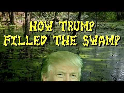 How Trump Filled The Swamp