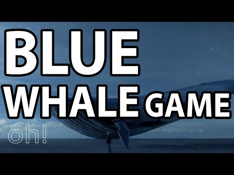 The Blue Whale Game | Teenage Suicide