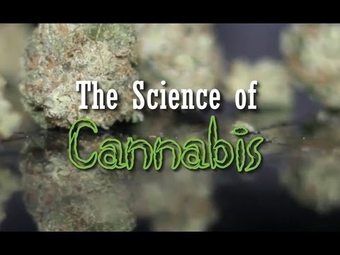 The Science of Cannabis (Documentary)