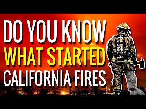 Do You Know What Started The California Fire Disaster
