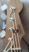 Fenwick Rodmaster Bass