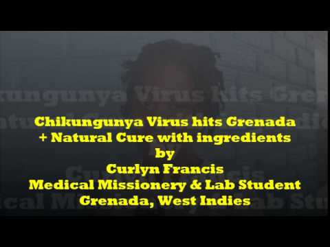 """Chikungunya"" Virus outbreak in Caribbean- Natural Cure & Ingredients revealed"