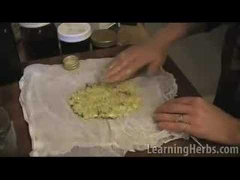 Herbal plaster: Garlic cough remedy