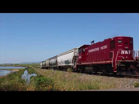 Summer Trains