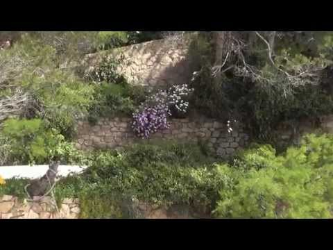 Wandeling vanaf  Phare de Camarat  Ramatuelle