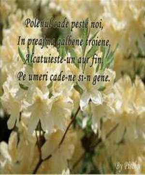 Risipei de deda florarul - Lucian Blaga