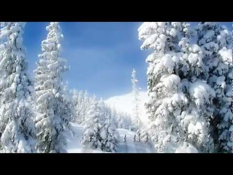 Tim Janis - Blanketed in snow