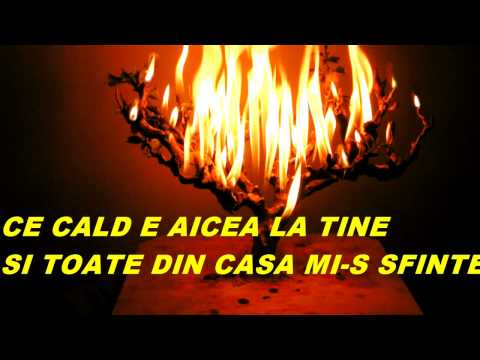 DECEMBRE G BACOVIA Celine Dion   So This Is Christmas
